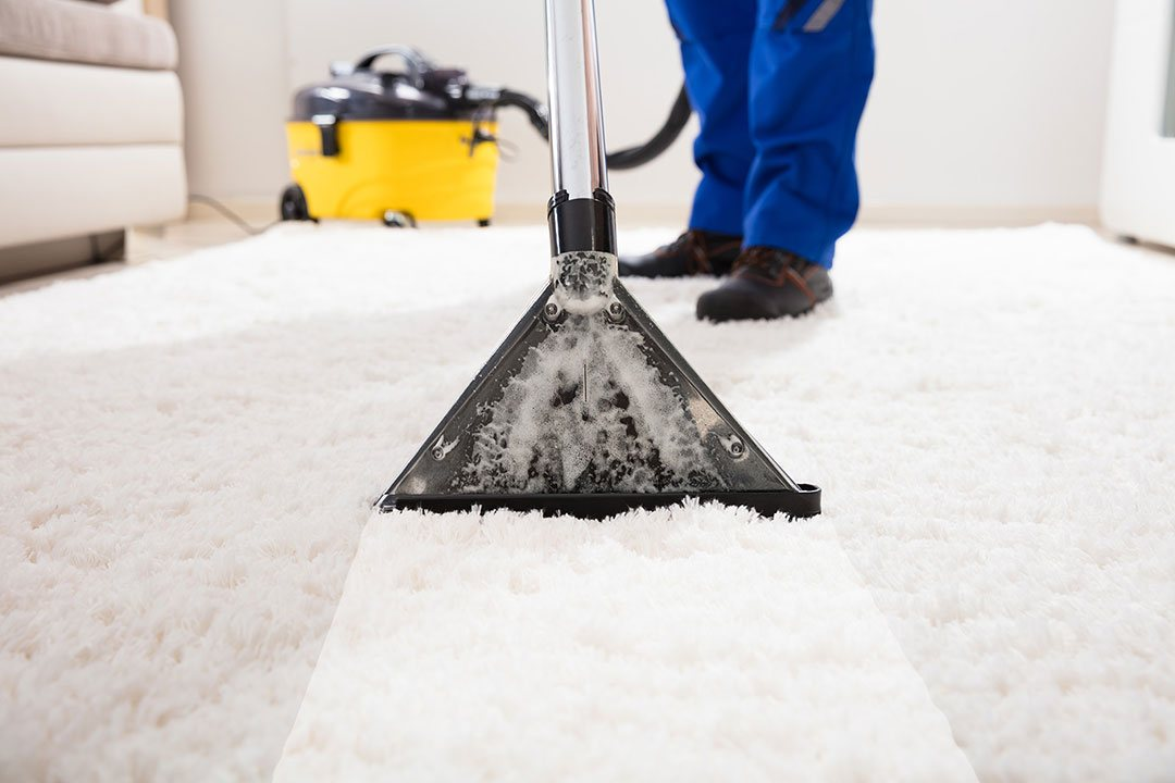 GreenChoice Carpet Cleaning manhattan