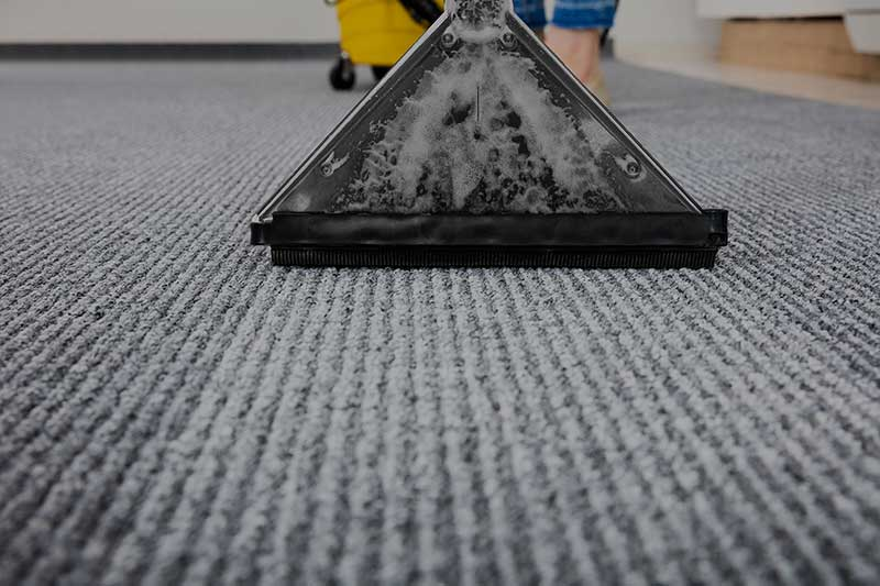 Affordable Carpet Cleaning in NYC